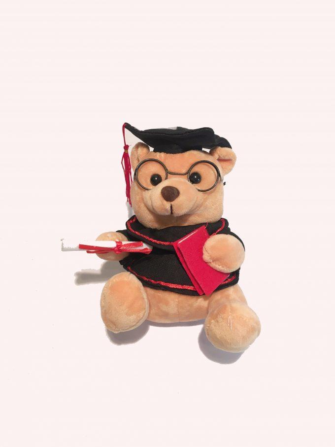 Graduation gift Small bear