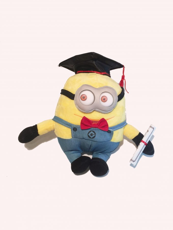 Graduation gift Minion