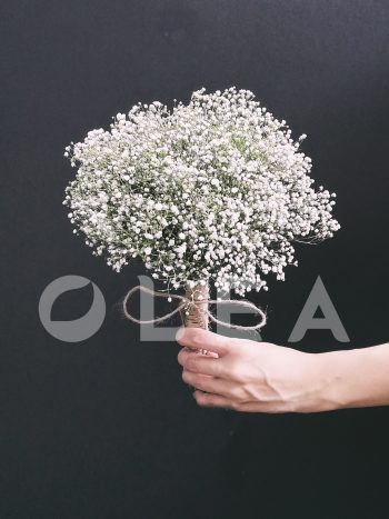 Baby breath bridal bouquet in KL