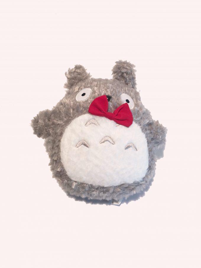 Graduation gift Totoro